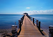 Fly Fishing Pro Prints - Cheeca pier Print by Carey Chen