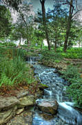 Cheekwood Prints - Cheekwood Creek Print by Zachary Cox