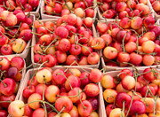 Farm Stand Art - Cheerful Cherries by Susan Colby