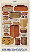 Books Drawings Posters - Cheese 1900s Uk Isabella Beeton  Mrs Poster by The Advertising Archives