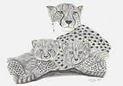 Cheetah And Her Cubs Print by Patricia Hiltz