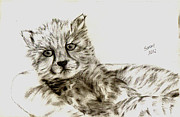 Basket Drawings Posters - Cheetah Cub Poster by Serran Dalmak