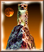 Full Moon Digital Art Originals - Cheetah by Daniel Janda