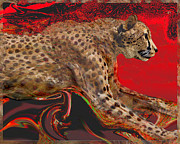 Martin Hardy - Cheetah in chase