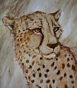 Cheetah Mixed Media Framed Prints - Cheetah Framed Print by Jody Domingue