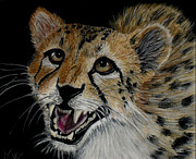Cheetah Pastels Framed Prints - Cheetah Framed Print by Naomi  Worrell