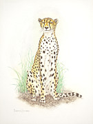 Cheetah Drawings Framed Prints - Cheetah on lookout Framed Print by Dag Sla