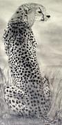 Cheetah Print by Suzette Kallen