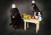Labrador Digital Art - Chef Tony and his sidekick Guido by Denise Oldridge