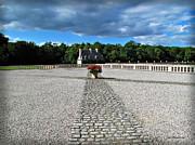 Joan  Minchak - Chenonceau Pathway
