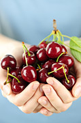 Finger Photo Prints - Cherries Print by Elena Elisseeva