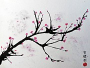 Sumi Ink Framed Prints - Cherry Blossom  Framed Print by Andrea Realpe