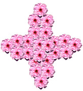 Blossom Prints - Cherry Blossom Cross Print by Jacqui Martin