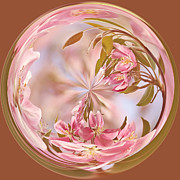 Orb Photos - Cherry Blossom Orb by Kim Hojnacki