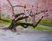 Cherry Blossoms Painting Originals - Cherry Blossom Tree by Linda Ginn
