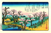 Padre Art Photos - Cherry Blossoms and Mount Fuji 1838 by Padre Art