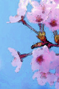 Sharon Cummings Digital Art - Cherry Blossoms - Blue Sky Floral by Sharon Cummings