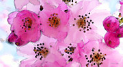 Delicate Prints - Cherry Blossoms - Flowers So Pink Print by Sharon Cummings