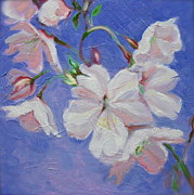 Cherry Blossoms Paintings - Cherry Blossoms by Karen Roncari