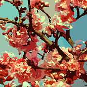 Photorealism Photo Prints - Cherry Blossoms Print by Liz Hooker