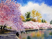 Washington Dc Paintings - Cherry Blossoms by Shirley Braithwaite Hunt