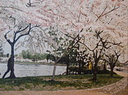 Cherry Blossoms Painting Metal Prints - Cherry Blossoms Metal Print by Terry Stephen