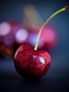 Cherry Print by Patricia Bainter