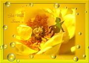 Joyce Dickens - Cherub on Yellow Rose Get Well Soon