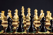 Game Piece Photo Metal Prints - Chess pieces on board Metal Print by Elena Elisseeva