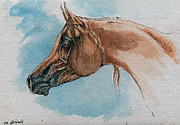 Horse Drawing Originals - Chestnut Arabian Horse by Angel  Tarantella