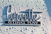 Car Photos Prints - Chevrolet Corvette Sting Ray Emblem Print by Jill Reger