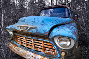 Pasture Scenes Prints - Chevy in the Woods Print by Debra and Dave Vanderlaan