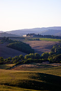 Tuscan Sunset Prints - Chianti Hills in Tuscany Print by Mathew Lodge
