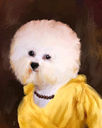 Jai Johnson - Chic Bichon Frise