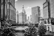 Trees And Bridge Prints - Chicago at Wabash Bridge Black and White Picture Print by Paul Velgos