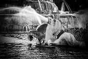 Seahorse Photo Metal Prints - Chicago Buckingham Fountain Seahorse in Black and White Metal Print by Paul Velgos