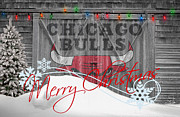 Bulls Photo Metal Prints - Chicago Bulls Metal Print by Joe Hamilton