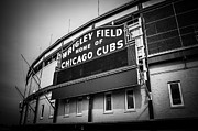 Editorial Photo Framed Prints - Chicago Cubs Wrigley Field Sign in Black and White Framed Print by Paul Velgos