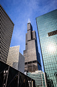 Exterior Prints - Chicago Downtown City Buildings with Willis-Sears Tower Print by Paul Velgos