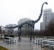 Gregory Dyer - Chicago Field Museum Dinosaur
