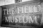 Editorial Metal Prints - Chicago Field Museum Sign in Black and White Metal Print by Paul Velgos