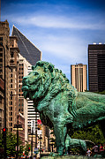 Bronze Framed Prints - Chicago Lion Statues at the Art Institute Framed Print by Paul Velgos