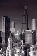 Willis Tower Art - Chicago Loop Towers BW by Steve Gadomski
