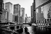 United Airlines Prints - Chicago River Buildings in Black and White Print by Paul Velgos