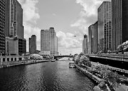 Chicago Skyline Bw Metal Prints - Chicago River - The River that flows backwards Metal Print by Christine Till