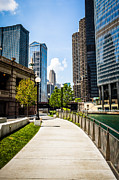 Airlines Prints - Chicago Riverwalk Picture Print by Paul Velgos