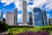 Illinois Flower Posters - Chicago Skyline and Lurie Garden Picture Poster by Paul Velgos