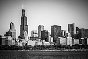 Exterior Prints - Chicago Skyline with Sears Tower in Black and White Print by Paul Velgos