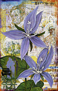 Andrea Lahue Art - Chicago Violets by Andrea LaHue aka Random Act