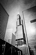 Buildings Posters - Chicago Willis-Sears Tower in Black and White Poster by Paul Velgos